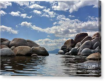 Water Level Canvas Print by Dan Holm