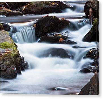 Water Like Mist Canvas Print