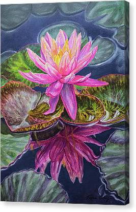 Flower Blooms Canvas Print - Water Lilies 17 Sunfire by Fiona Craig