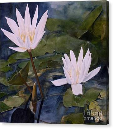 Water Lily At Longwood Gardens Canvas Print