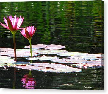 Canvas Print featuring the photograph Water Lily by Greg Patzer