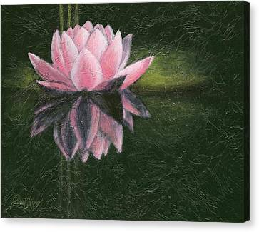 Canvas Print - Water Lily by Janet King