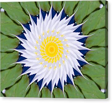 Canvas Print featuring the photograph Water Lily Kaleidoscope by Bill Barber