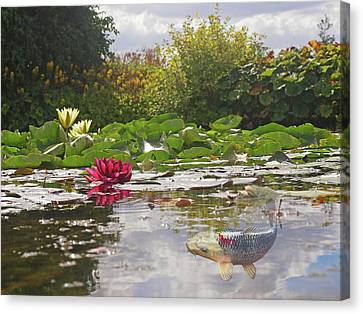 Water Lily Koi Pond Canvas Print by Gill Billington