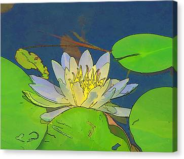 Canvas Print featuring the digital art Water Lily by Maciek Froncisz