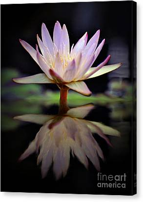 Canvas Print featuring the photograph Water Lily by Savannah Gibbs