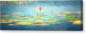 Cambodia Canvas Print - Water Lily - Tribute To Monet by Stephen Stookey