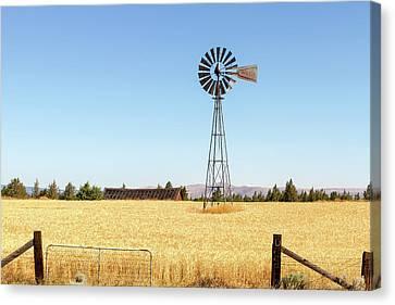 Water Pump Windmill At Wheat Farm In Rural Oregon Canvas Print by David Gn