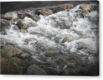 Water Rapids In Breckenridge Colorado Canvas Print by Randall Nyhof