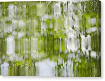 Canvas Print featuring the photograph Water Reflections by Wanda Krack