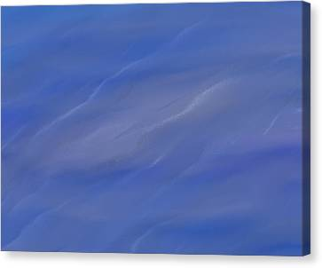 Silk Water Canvas Print - Water Ripples by Dan Sproul