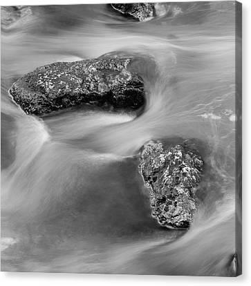 Water Canvas Print by Scott Meyer
