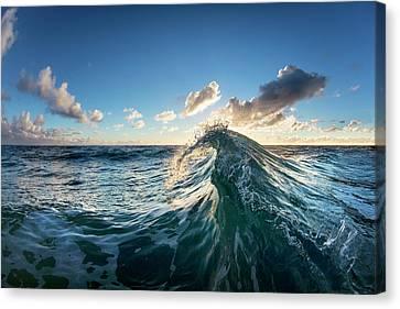 Water Scythe Canvas Print