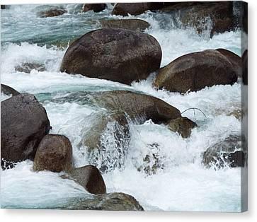 Water Spirits I Canvas Print