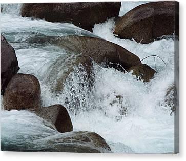 Water Spirits II Canvas Print