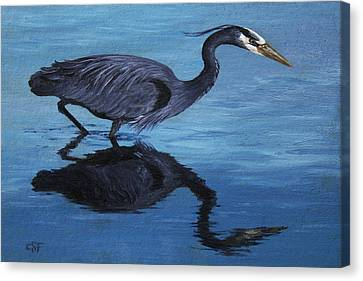 Water Stalker - Blue Heron Canvas Print by Crista Forest
