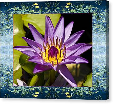 Canvas Print featuring the photograph Water Star by Bell And Todd