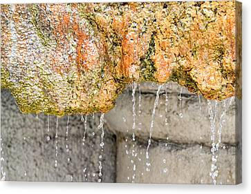 Water-worn Fountain Canvas Print by Bill Mock