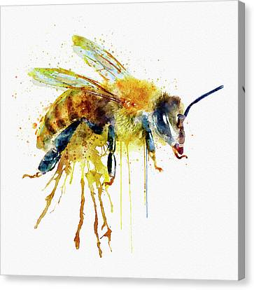 Watercolor Bee Canvas Print by Marian Voicu