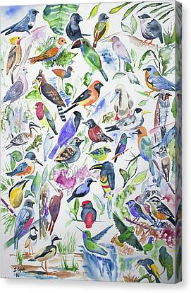 Watercolor - Birds Of Ecuador Canvas Print by Cascade Colors