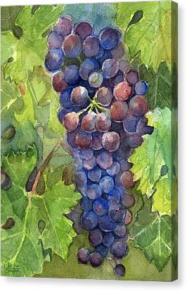Purple Grapes Canvas Print - Watercolor Grapes Painting by Olga Shvartsur