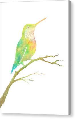 Watercolor Hummingbird Canvas Print