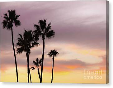 Canvas Print featuring the photograph Watercolor Sky by Ana V Ramirez