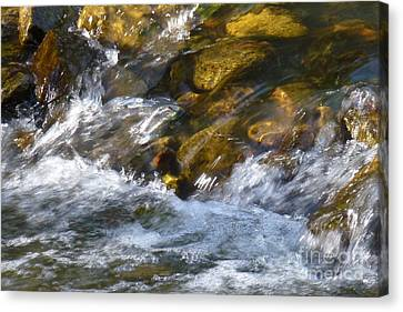 Canvas Print featuring the photograph Watercourse by Jean Bernard Roussilhe