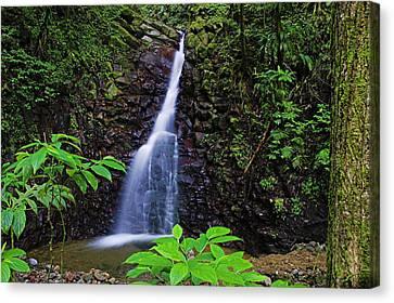 Waterfall-1-st Lucia Canvas Print