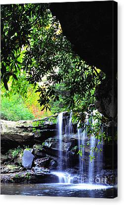Waterfall And Rhododendron Canvas Print by Thomas R Fletcher