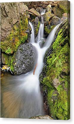 Canvas Print featuring the photograph Waterfall Atop Wolf Creek Pass - Colorado - Nature by Jason Politte