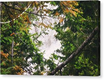 Waterfall Calling My Name Canvas Print by Janie Johnson
