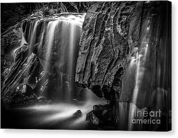 Waterfall In Black And White Canvas Print by Ernesto Ruiz