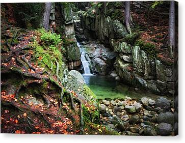 Waterfall In Enchanted Forest Canvas Print