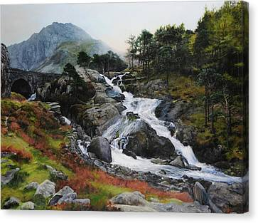 Waterfall In February. Canvas Print