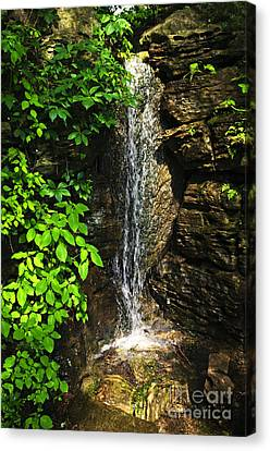 Waterfall In Forest Canvas Print