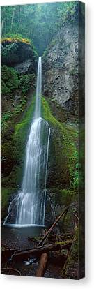 Waterfall In Olympic National Rainforest Canvas Print