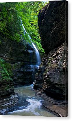 Waterfall In The Gorge Canvas Print by Mike Horvath