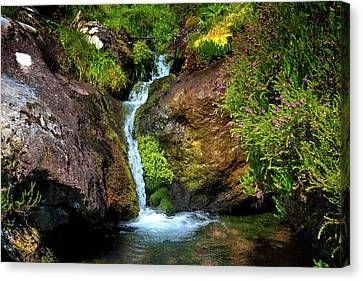 Waterfall In The Mountains Of Ireland Canvas Print by Debra and Dave Vanderlaan