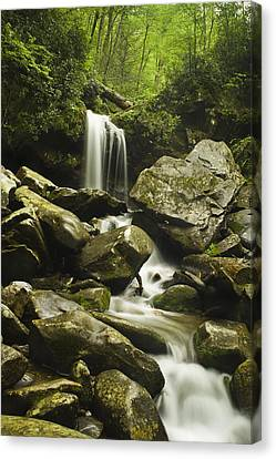 Waterfall In The Spring Canvas Print