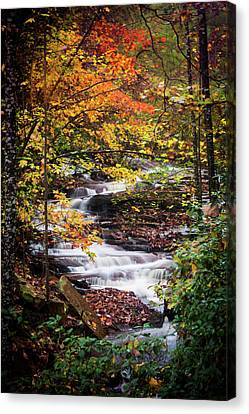 Canvas Print featuring the photograph Waterfall Kaleidoscope  by Parker Cunningham
