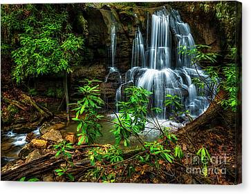 Waterfall On Back Fork Canvas Print by Thomas R Fletcher