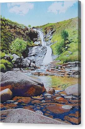 Waterfall On Skye 2 Canvas Print by Constance Drescher