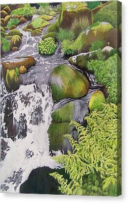Waterfall On Skye Canvas Print by Constance Drescher