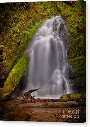 Waterfall Showers Canvas Print