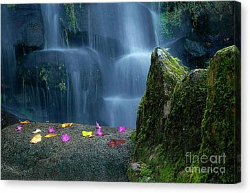 Waterfall02 Canvas Print by Carlos Caetano