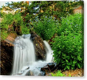 Waterfalls Above Dream Lake Canvas Print