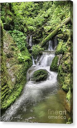 Canvas Print featuring the photograph Waterfalls And Rapids On The White Opava Stream by Michal Boubin