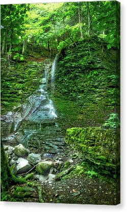 Waterfalls Finger Lakes New York 01 Canvas Print by Thomas Woolworth