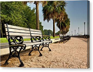 Waterfront Park Bench  Canvas Print by Drew Castelhano